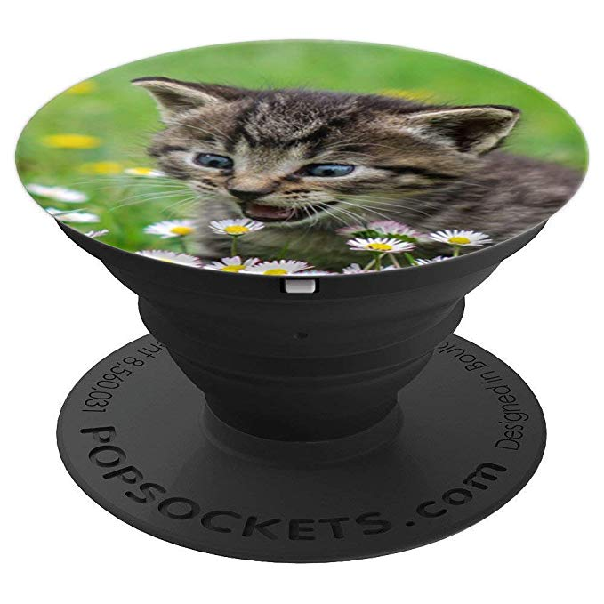 Kitten, Kitty, Crazy looking eyes, flowers, for cat lovers Pop Socket - PopSockets Grip and Stand for Phones and Tablets