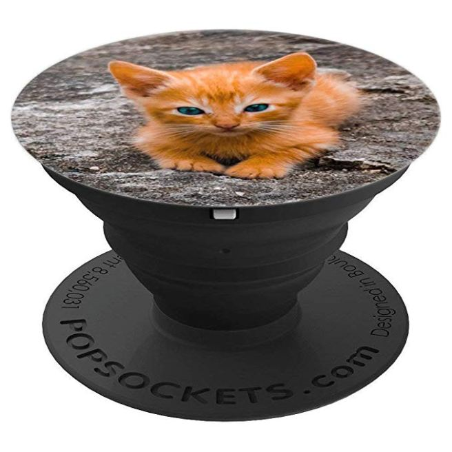 Kitten, Kitty, Orange colored Kitty Cat - PopSockets Grip and Stand for Phones and Tablets